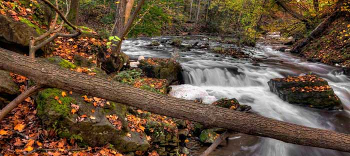 Fall is a wonderful time to enjoy shopping, dining, and the wonderful sights in Hunterdon County, NJ