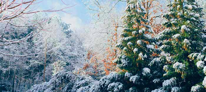 winter is a wonderful time to enjoy shopping, dining, and the wonderful sights in Hunterdon County, NJ